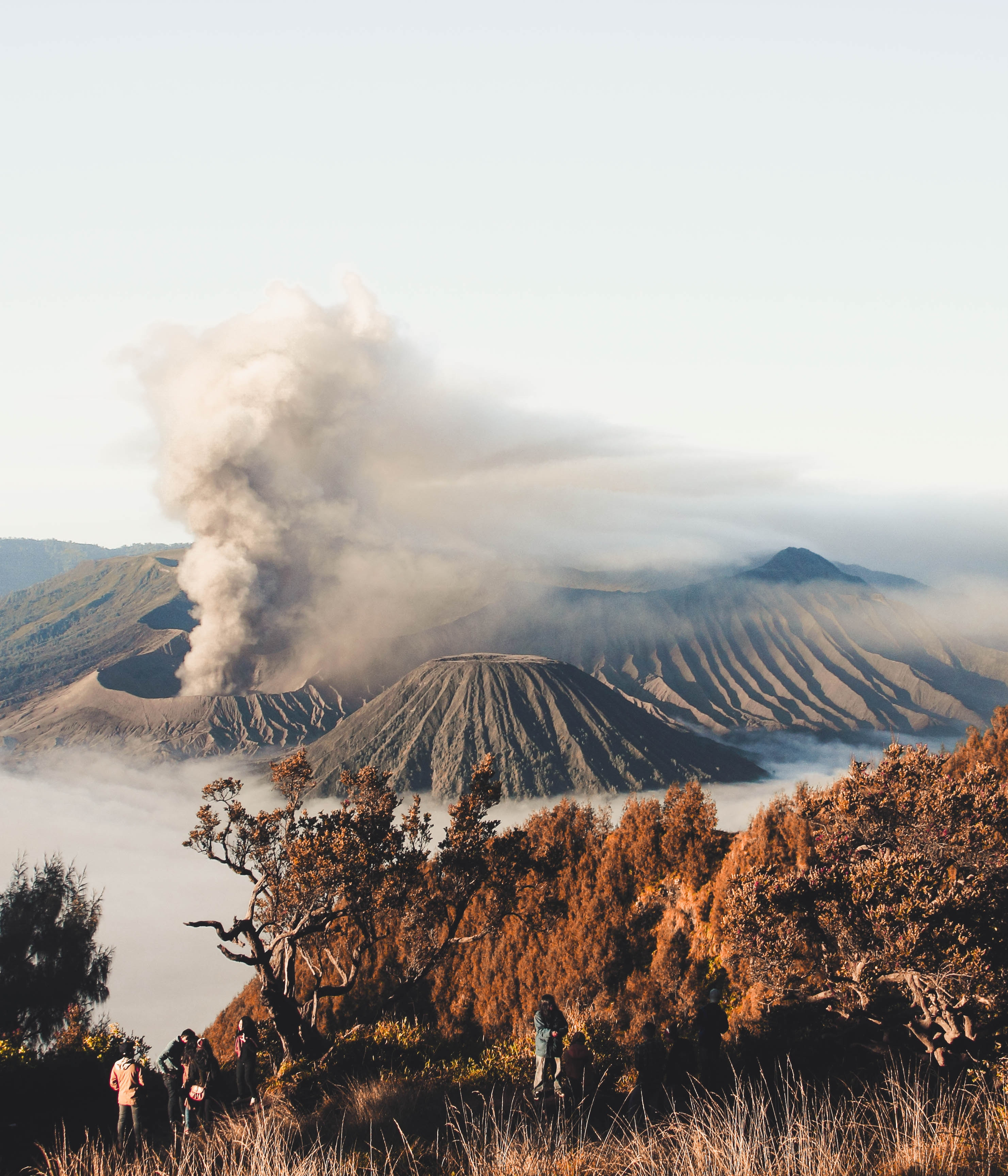 mount bromo day tour