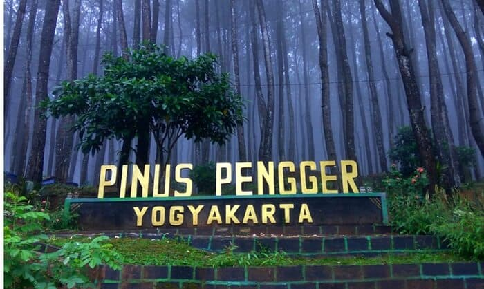 pinus-pengger-yogyakarta